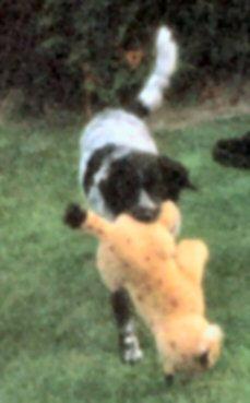 1999-09 Tessa & Knuffelbeest