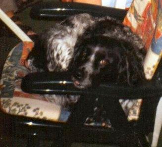 2002-07-17 Tessa