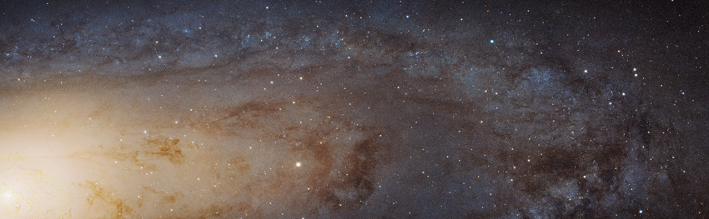 Portion of Andromeda Galaxy (M31)