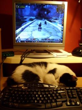 2009-06-23 Warcraft Buddy 2
